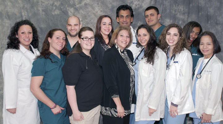 Homepage Team Picture of VCA South Shore Animal Hospital