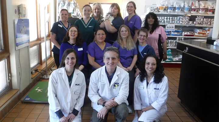Homepage Team Picture of VCA Southeast Area Animal Hospital