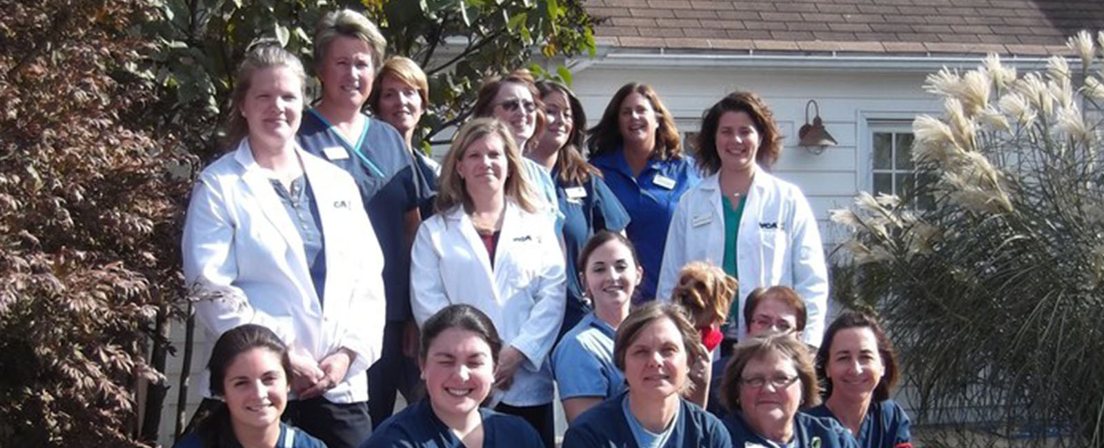Homepage Team Picture of VCA Southwick Animal Hospital