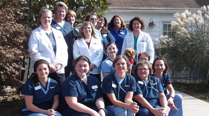 Team Picture of VCA Southwick Animal Hospital