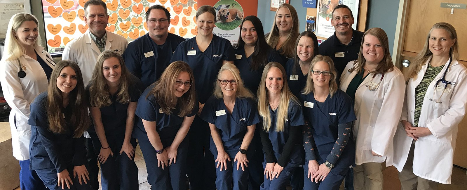 Team Picture of VCA Spring Animal Hospital