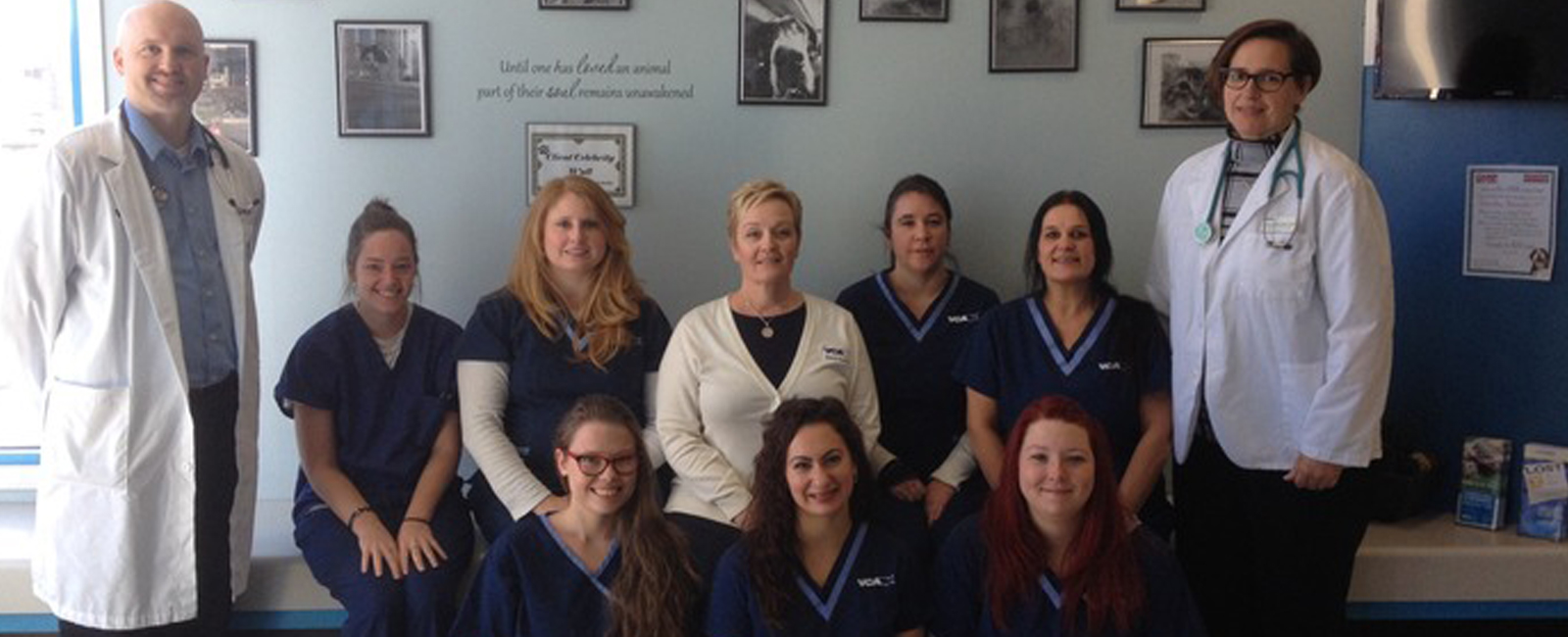 Homepage Team Picture of VCA St. Clair Shores Animal Hospital