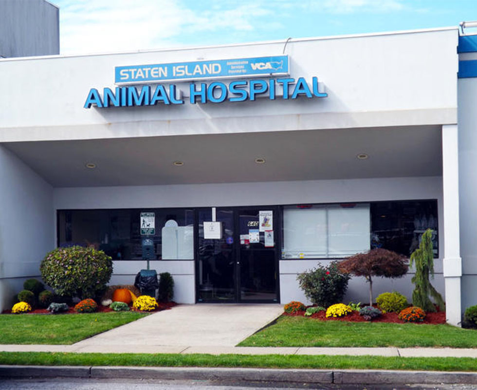 Hospital Picture of VCA Staten Island Animal Hospital