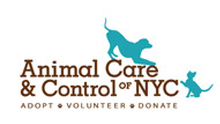 Animal Care and Control of NYC