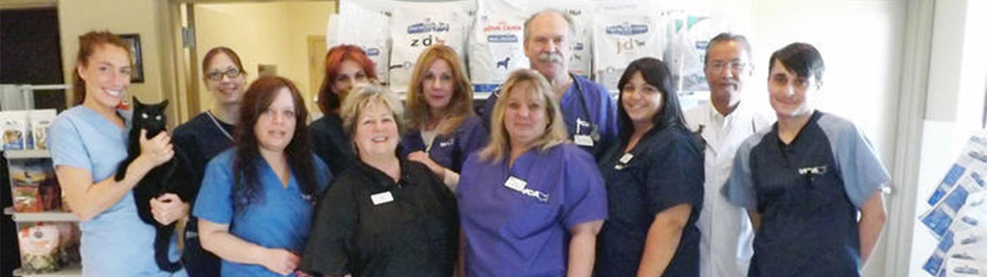 Team Picture of VCA Staten Island Animal Hospital
