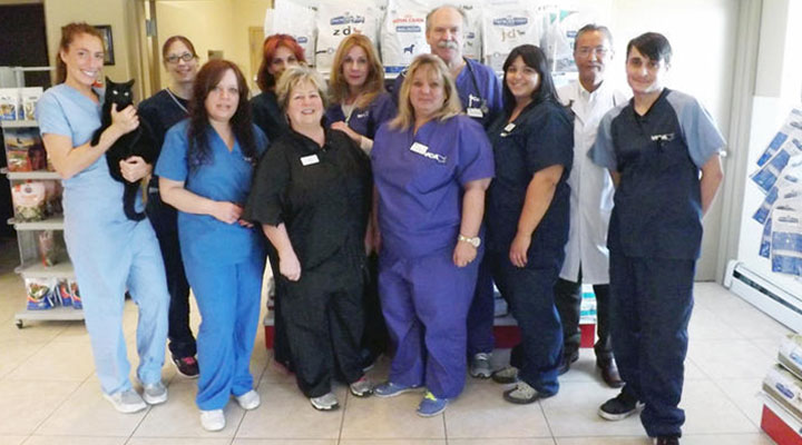 Homepage Team Picture of VCA Staten Island Animal Hospital