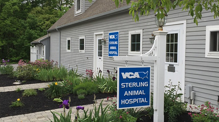 Homepage Hospital Picture of VCA Sterling Animal Hospital