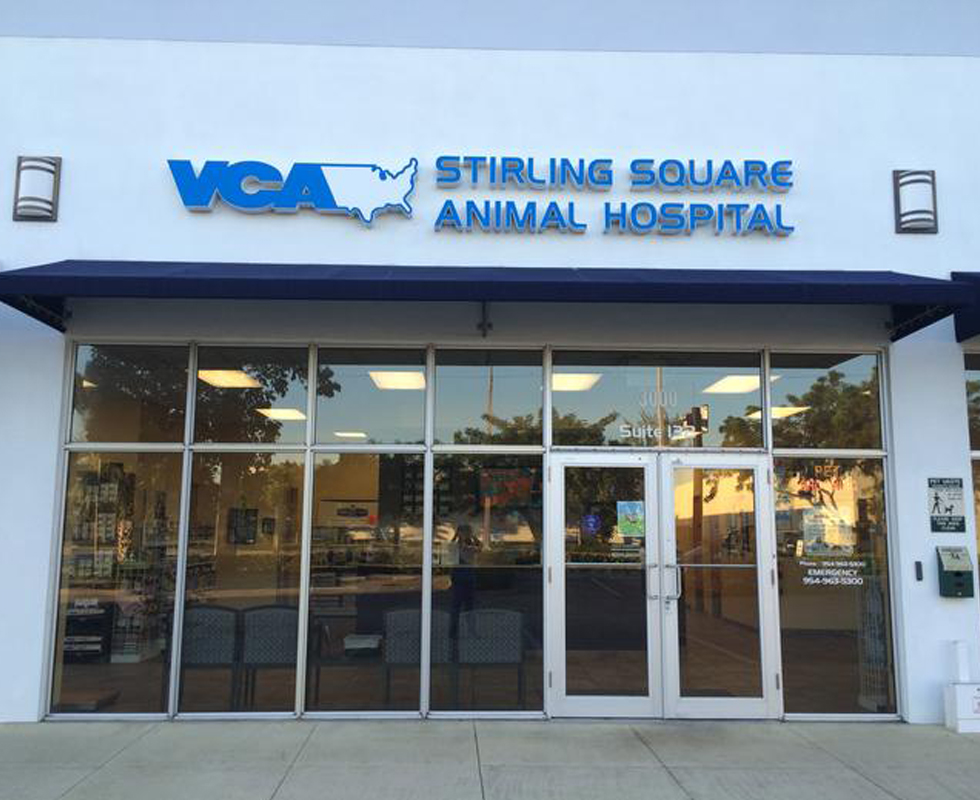 Hospital Picture of VCA Stirling-Square Animal Hospital