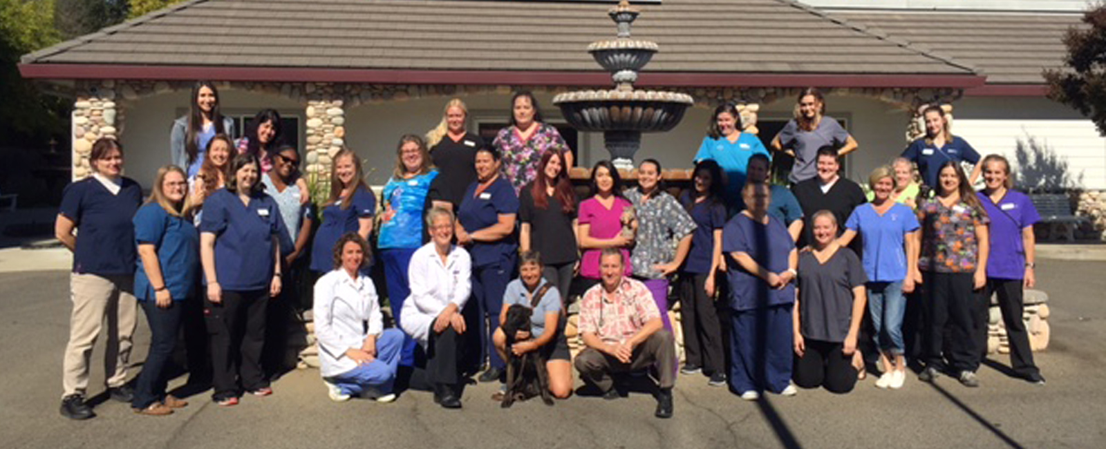 Team Picture of VCA Sunset Animal Hospital