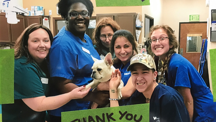 VCA Tanglewood Animal Hospital Community Partners