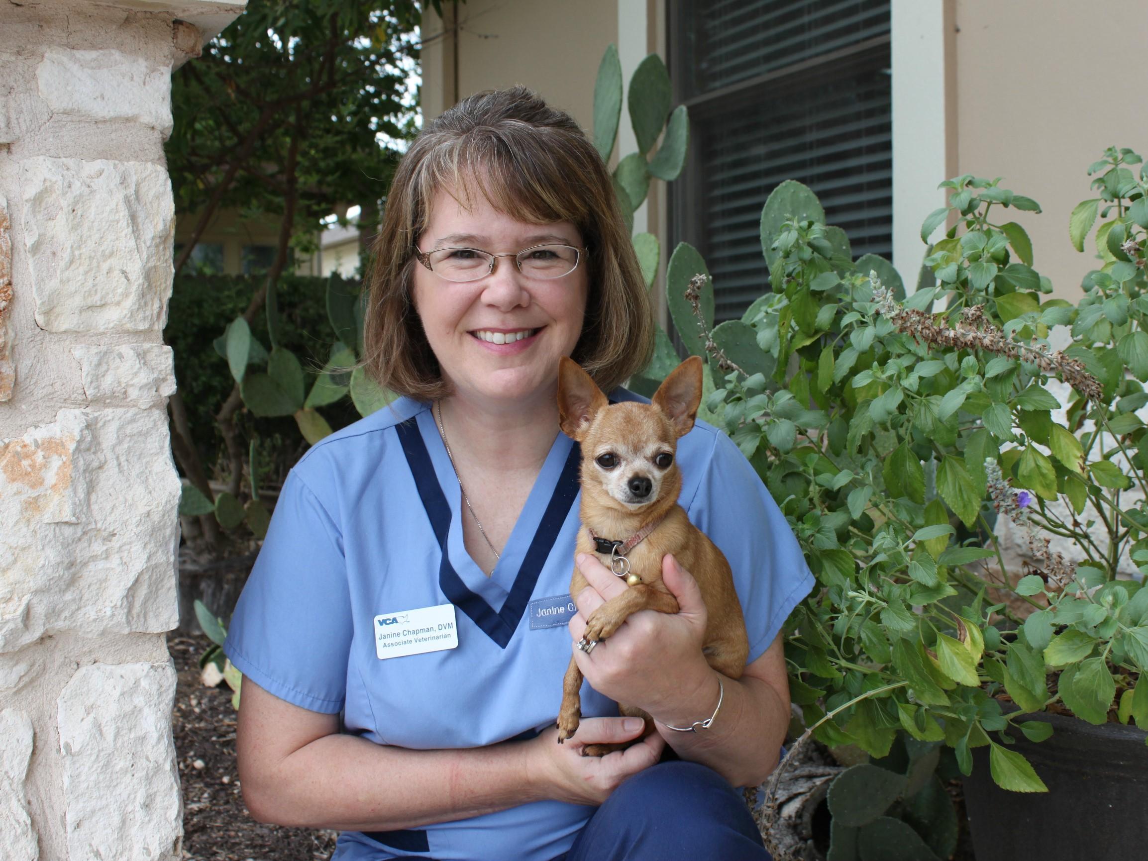 Austin Vets at VCA Tanglewood Animal Hospital