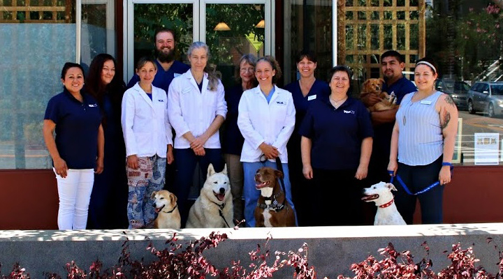 Homepage Team Picture of VCA Tender Care Animal Hospital