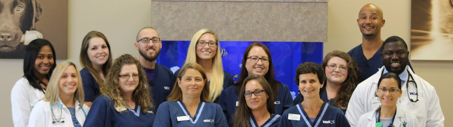 Team Picture of VCA Terrell Mill Animal Hospital