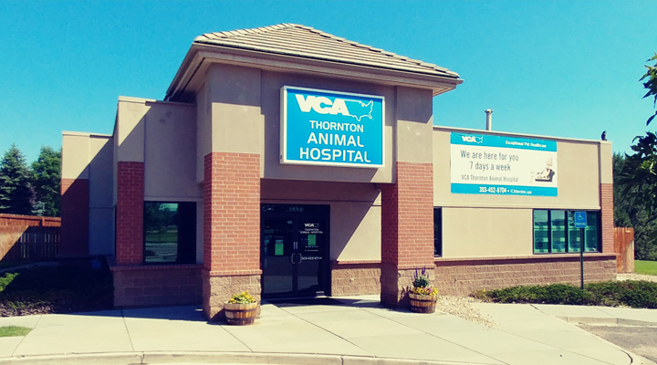 Homepage Hospital Picture of VCA Thornton Animal Hospital