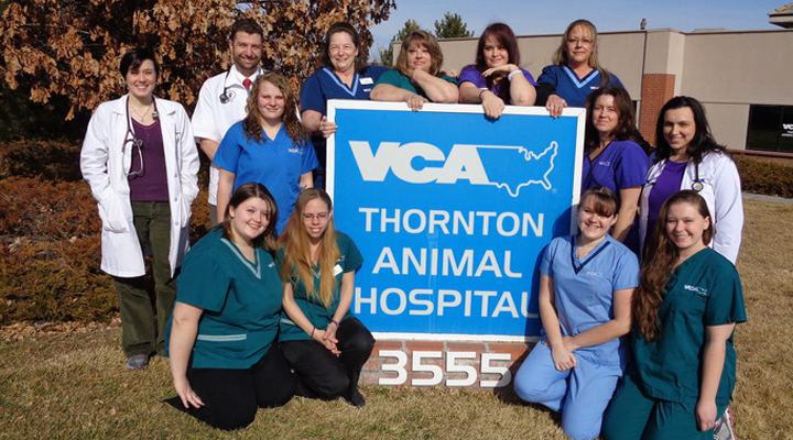 Team Picture of VCA Thornton Animal Hospital
