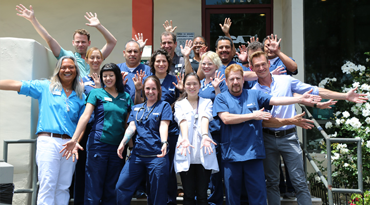 Homepage Team Picture of VCA TLC Animal Hospital