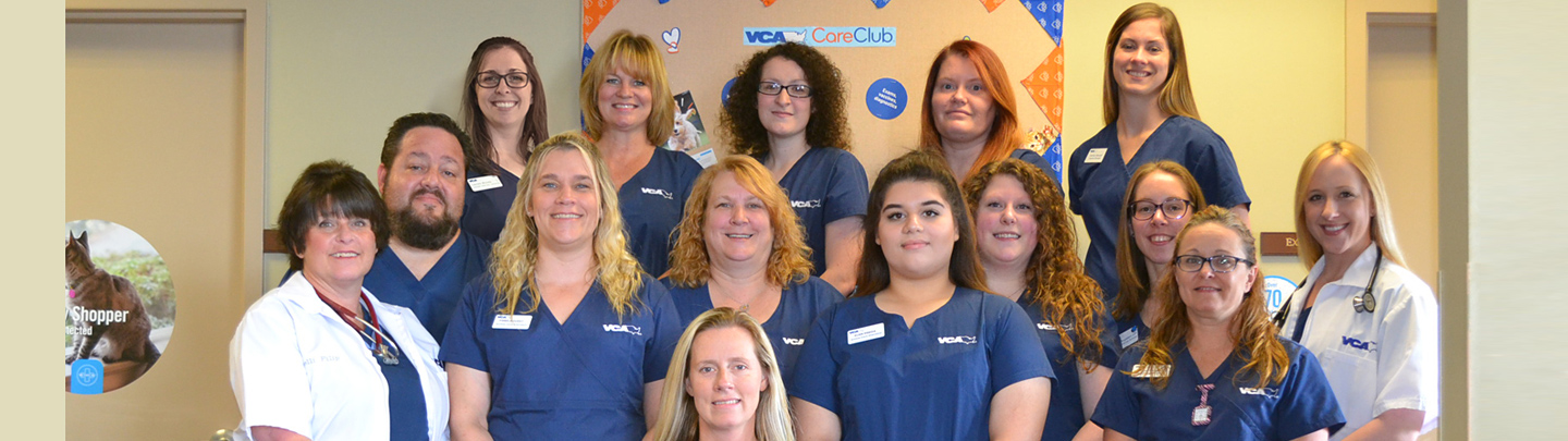 Team Picture of VCA Tomball Veterinary Hospital