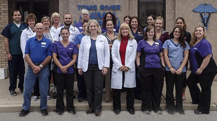 Homepage Team Picture of VCA Toms River Animal Hospital
