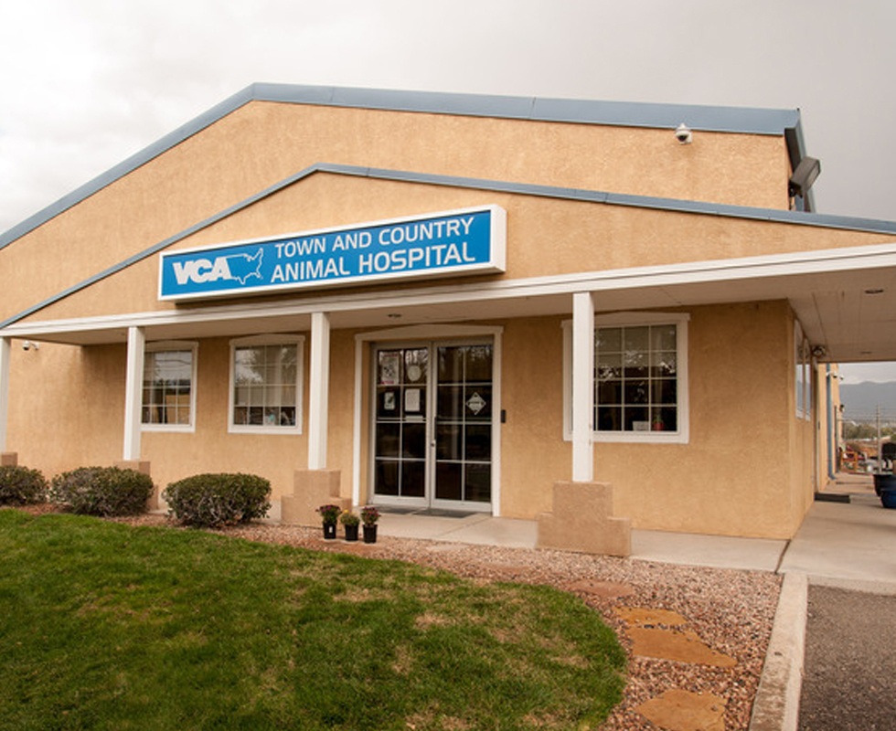Hospital Picture of VCA Town and Country Animal Hospital