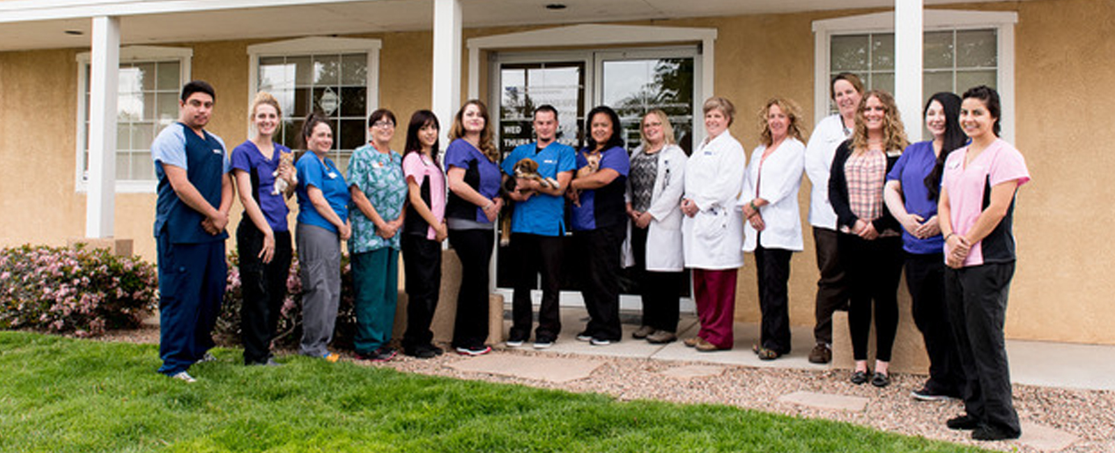 Homepage Team Picture of VCA Town and Country Animal Hospital
