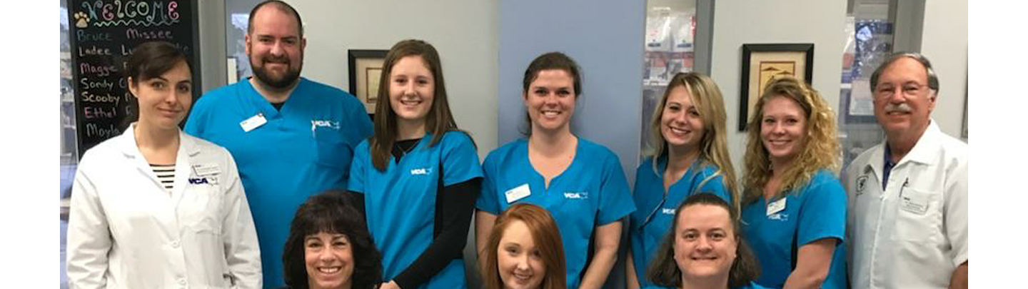 Team Picture of VCA TriangleTower Animal Hospital