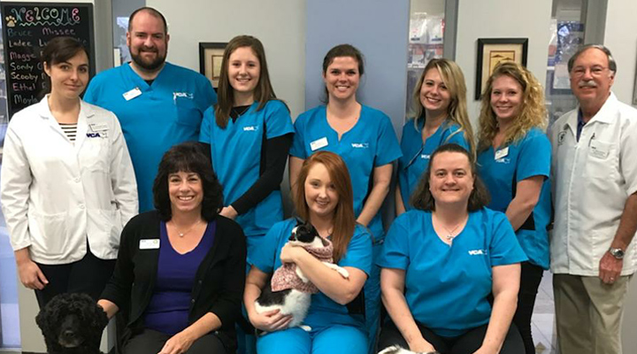 Homepage Team Picture of VCA TriangleTower Animal Hospital