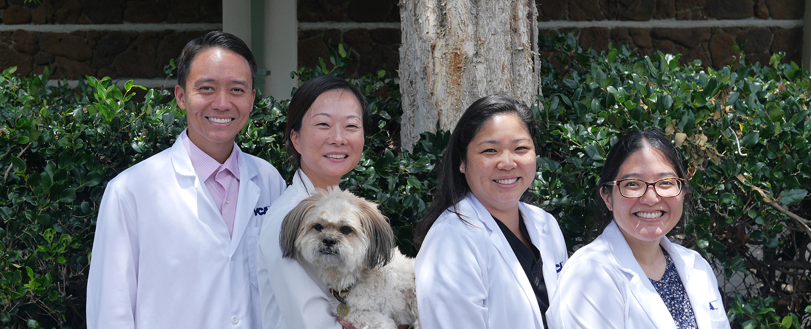 Team Picture of VCA University Animal Hospital