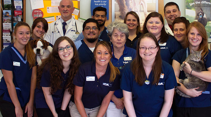 University Veterinary Clinic - Our Team