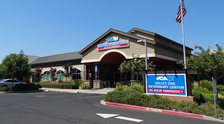 VCA Valley Oak Animal Hospital in Chico California