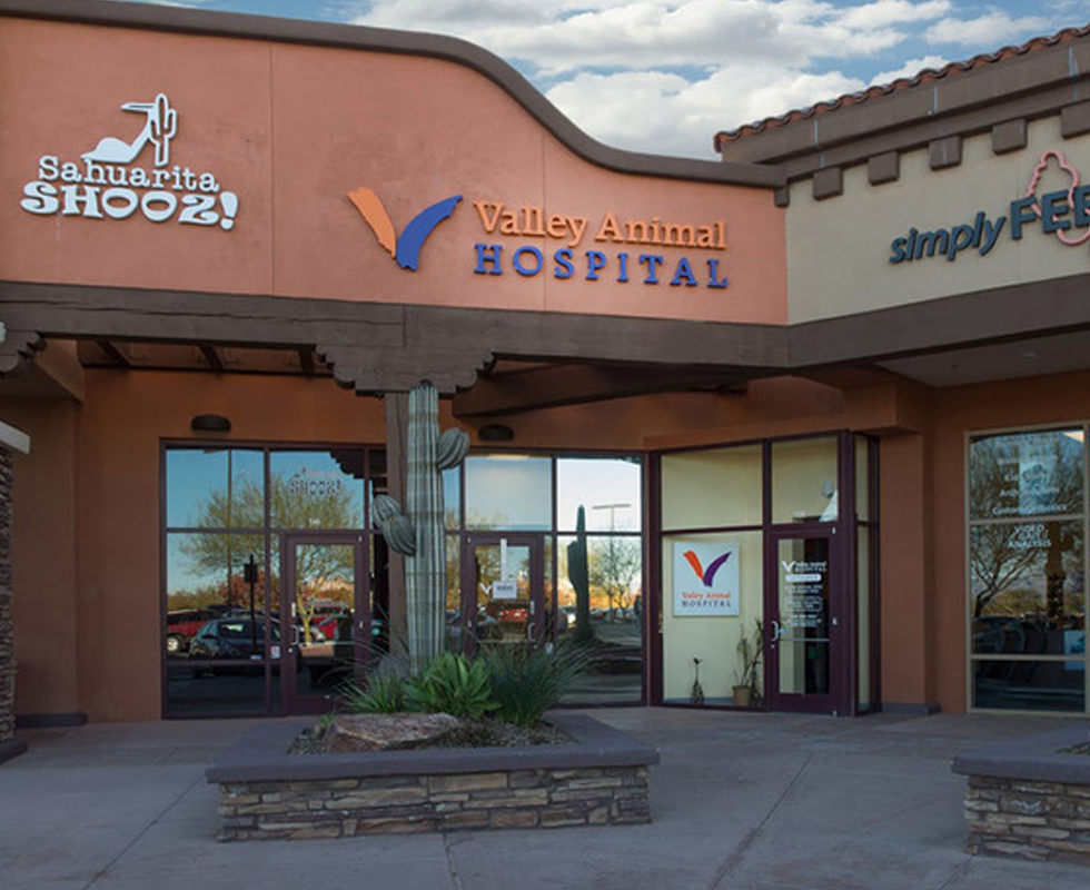Hospital Picture of  VCA Valley Sahuarita Animal Hospital