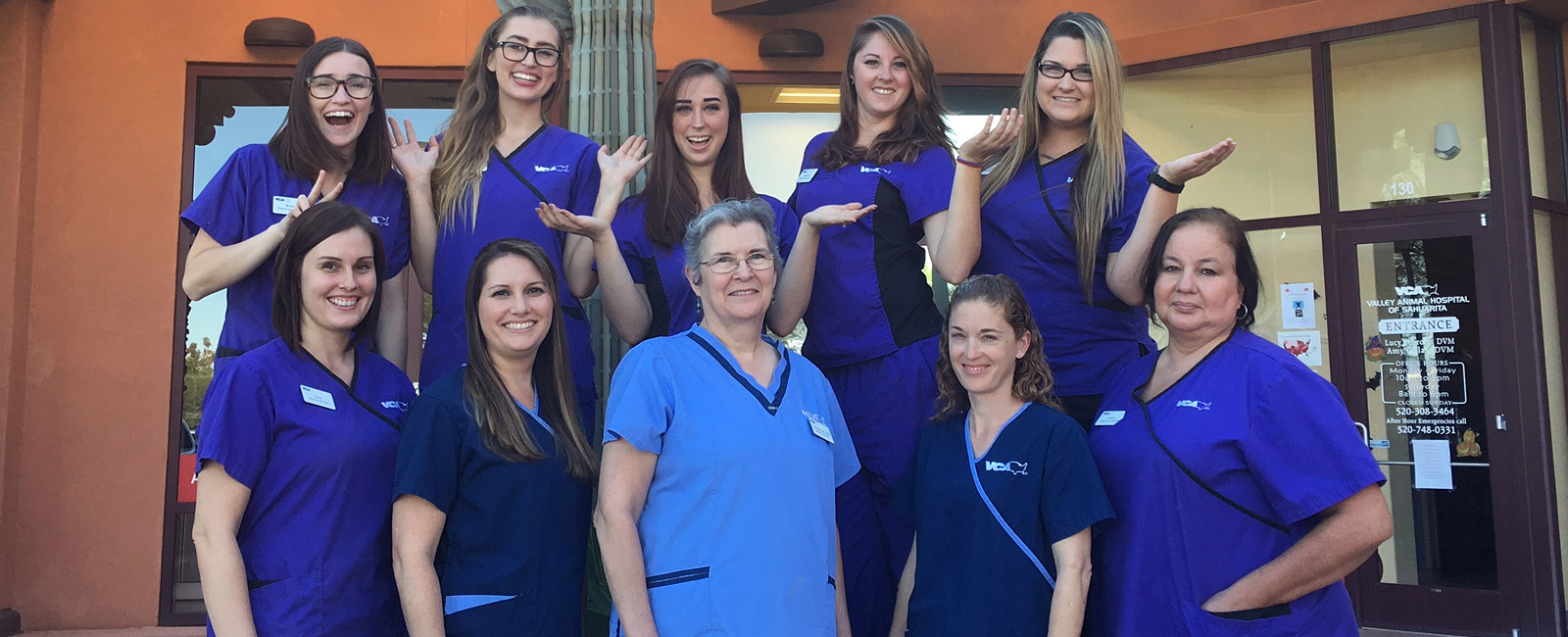 Team Picture of VCA Valley Sahuarita Animal Hospital