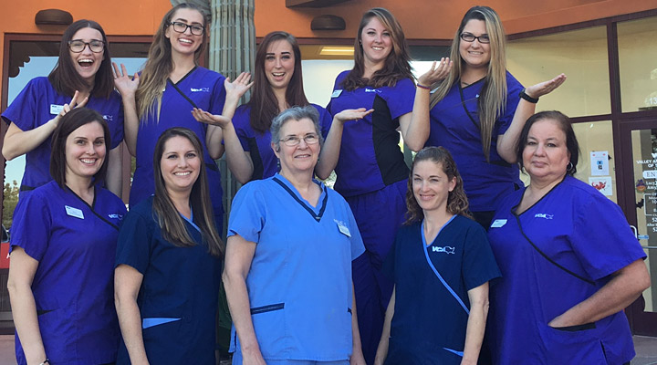 Homepage Team Picture of VCA Valley Sahuarita Animal Hospital