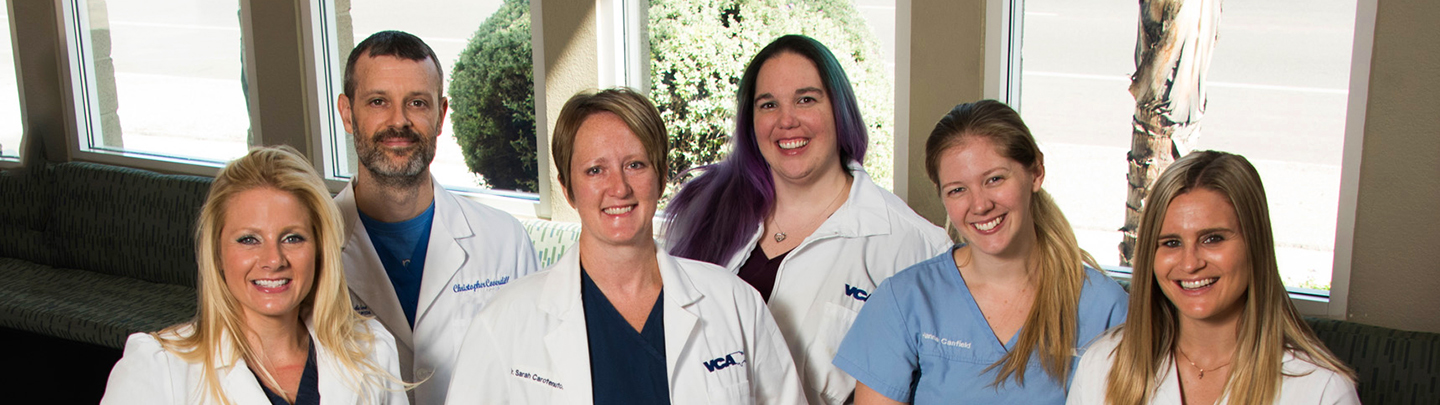 Photo of ER Veterinarians at VCA Valley Animal Hospital and Emergency Center