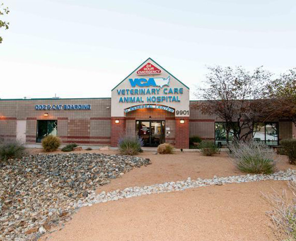 Hospital Pictures of VCA Veterinary Care Animal Hospital and Referral Center