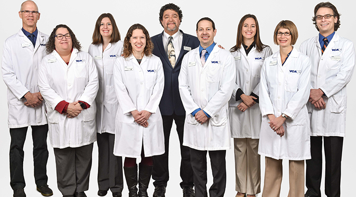 Team Picture of VCA Veterinary Care Specialty Animal Hospital
