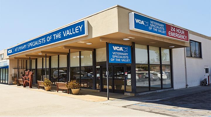 Veterinarians in Woodland Hills, CA | VCA Veterinary