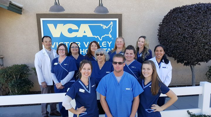 Team Picture of VCA Victor Valley Animal Hospital