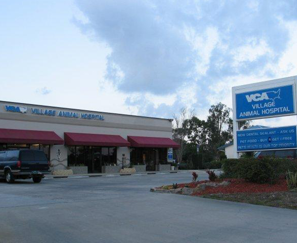 Hospital Picture of  VCA Village Animal Hospital
