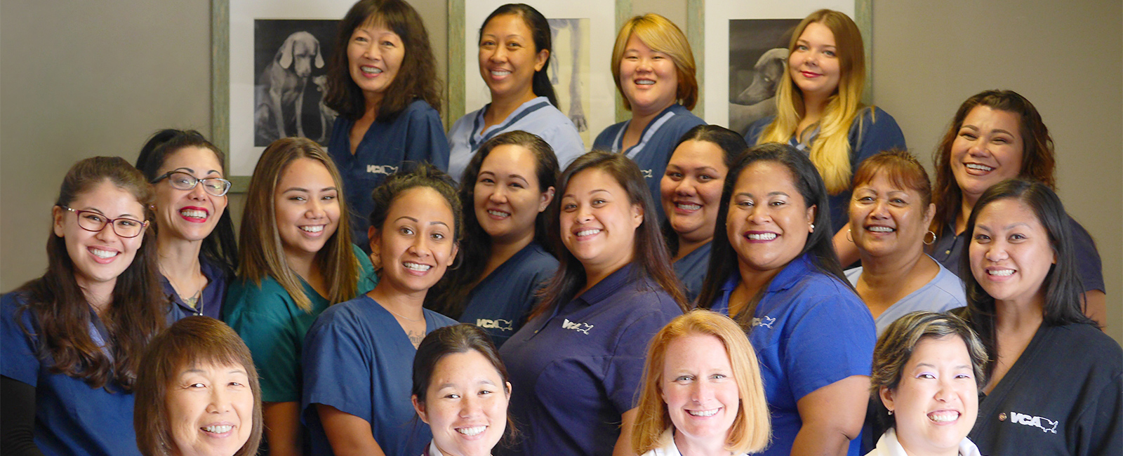 Team Picture of VCA Waipahu Animal Hospital