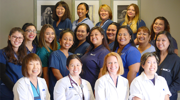 Homepage Team Picture of VCA Waipahu Animal Hospital