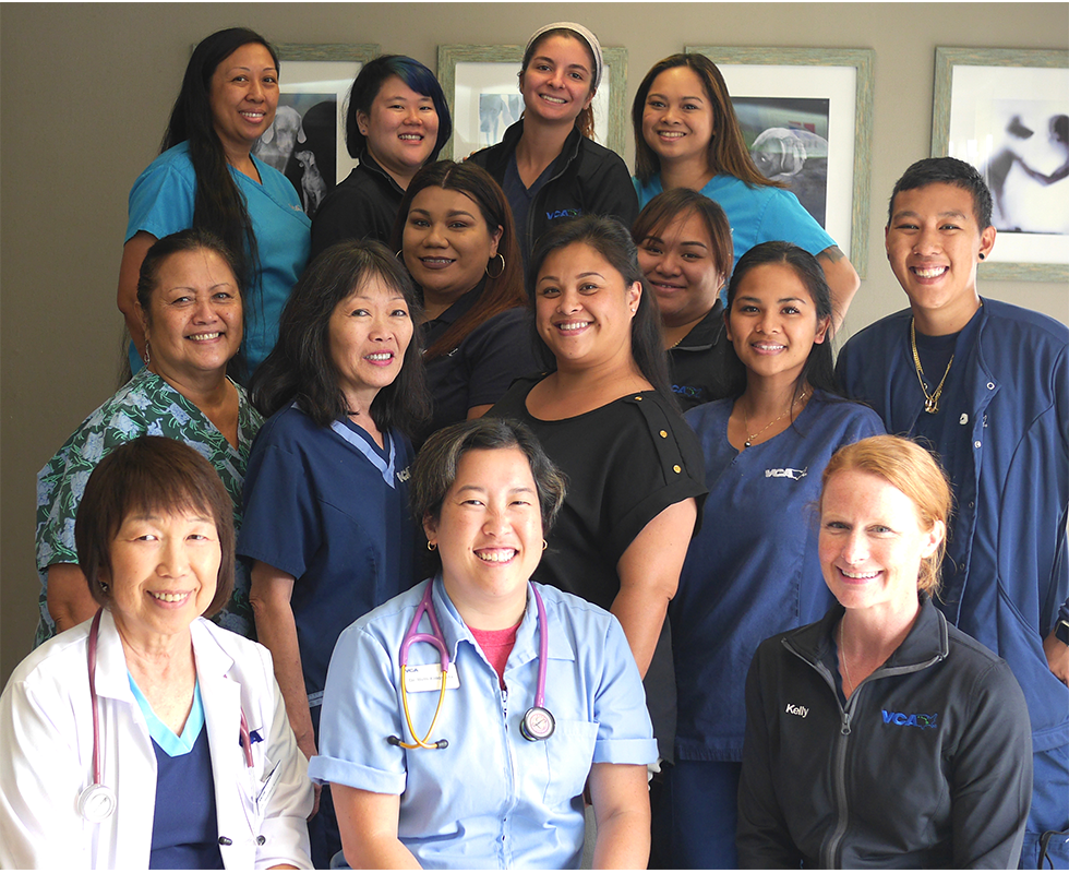Our Team at VCA Waipahu