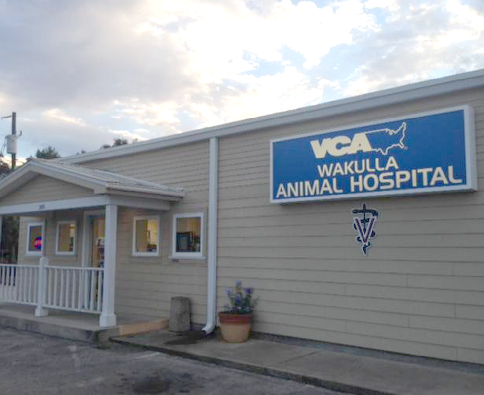 Hospital Picture of  VCA Wakulla Animal Hospital