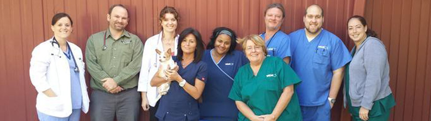 Team Picture of VCA Wellington Animal Hospital
