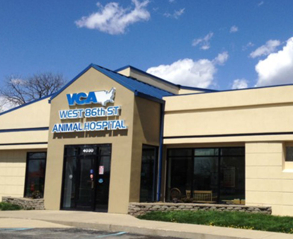 Hospital Picture of  VCA West 86th Street Animal Hospital
