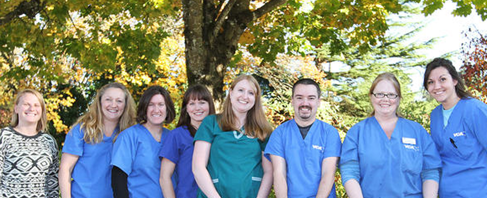 Homepage Team Picture of VCA West  Linn Animal Hospital