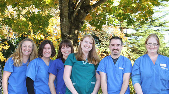 Team Picture of VCA West Linn Animal Hospital