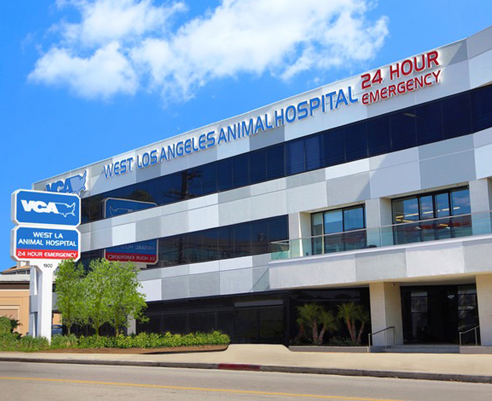 Hospital Picture of  VCA West Los Angeles Animal Hospital