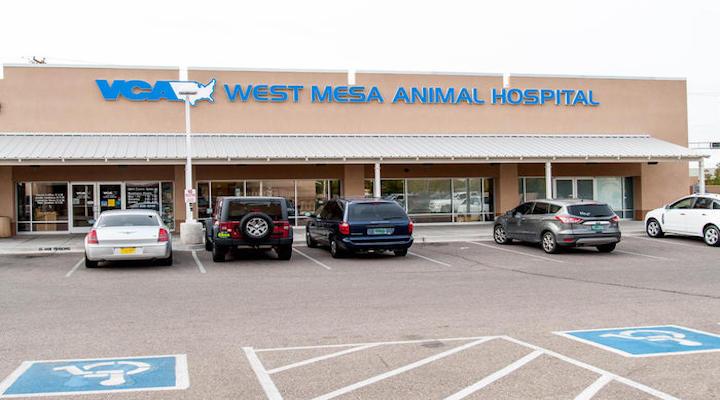 Hospital Picture of VCA West Mesa Animal Hospital
