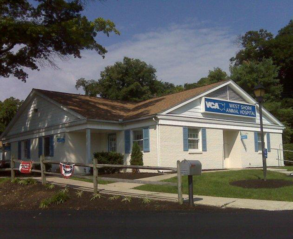 Hospital Picture of VCA West Shore Animal Hospital