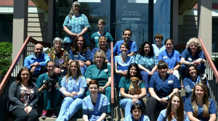 Team Picture of VCA Westboro Animal Hospital